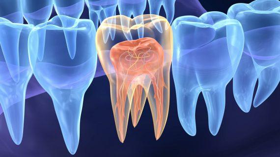 Clínica Atenta Odontologia Sistêmica - Endodontia